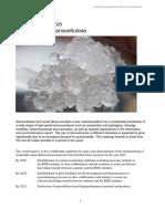 Roadmap Materials From Nanocellulose