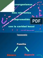 3_MicroorganismosCavBucal_Falta.pptx