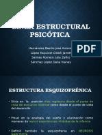 Linea Estrutural Esquizofrenica y Paranoica