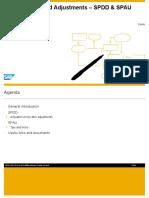 Upgrade Standard Adjustments - SPDD -SPAU_summary