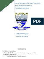 Modelo de informe de laboratorio clínico
