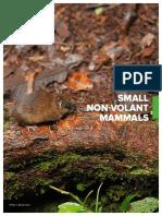 Small Non Volant Mammals