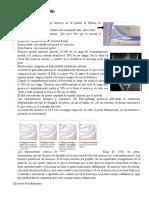 Tratamiento kinésico post-Qx en Rodilla