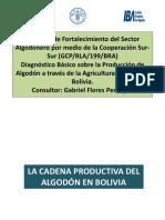 Diagnbasicoproduccionalgodonafbo 141023104828 Conversion Gate01 (1)
