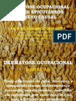 Dermatoseocupacional Causasdiretas 130523130150 Phpapp02