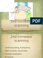 2nd Trimester Scan