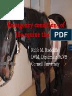 Apostila - Emergency.pdf