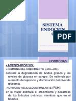 Diapositiva del Sietema Endocrino