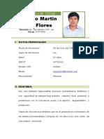 Curriculum Vita-martin