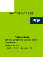 Photosynthesis Power Point
