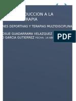 IntroDuccion a La Fisioterapia TRABAJO
