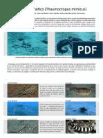 g29_Entrega 3 Tomas Navarro grupo 29 (1).pdf