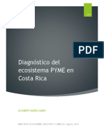 diagnostico PYMES
