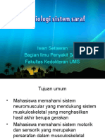 Kuliah Kinesiologi Sistem Saraf