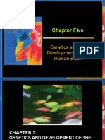Chapter_5_LF.ppt
