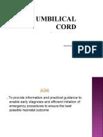 Cord Prolapse 07
