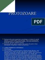 Protozoa Re