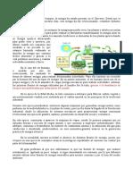 Producción de Energía Eléctrica en Canarias - Irache - 3ºD