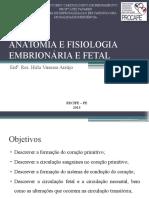 Anatomia e Fisiologia Embrionária e Fetal