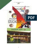padem_2011