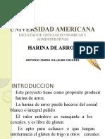 PROPIEDADES DE LA HARINA DE ARROZ