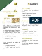 apostila-baixa-idade-media.pdf