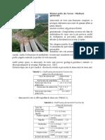 Alunecarile de teren.doc