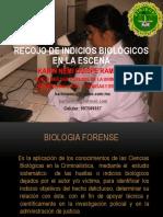 recojo_de_indicios_biologicos_en_la_escena.pdf
