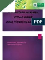 Aula 10 - LTCAT.pdf