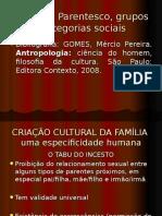 o Social Parentesco, Grupos e Categorias Sociais