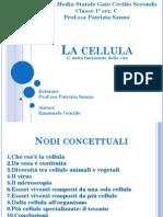 La Cellula