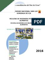 Situación de Producción de Frutas y Hortalizas en El Perú