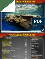 Revista de buceo Sensaciones Numero 7