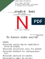 netzstadt-ağ kent-ferdi inanlı-network city-urban design, design