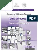 21_Guia_de_Estudio_HD.pdf