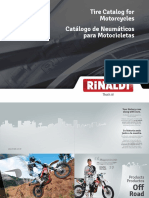 Rinaldi.pdf