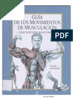 Guia Movimientos Musculacion