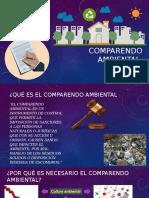 COMPARENDO-AMBIENTAL (1)