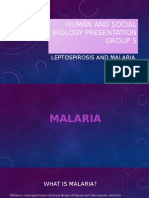 Human and Social Biology - Presentation on Malaria and Leptospirosis