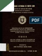 TESIS TEMO.pdf