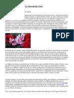Article   Floristería La Rosaleda (54)