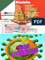 HIV-AIDS di TNI AD