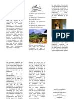 Bolívar Conservacionista.docx