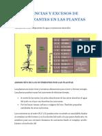 CARENCIAS Y EXCESOS DE FERTILIZANTES EN LAS PLANTAS.pdf