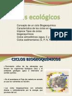 Clase 5 Ciclos Ecologicos