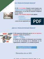 Sistemas de Informacion Gerencial (1)