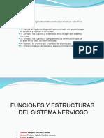 Actividad Del Sistema Nervioso Cs2-1604040001