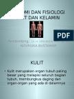 Anatomi Dan Fisiologi Kulit Dan Kelamin Pp