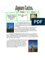 Saguaro Cactus Article