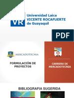 Presentación FORMULACIÓN DE PROYECTO CLASE 16 AL 22 DE MAYO .pdf